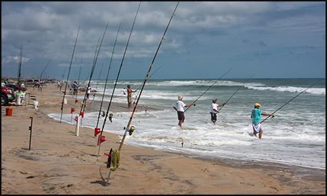 Invitational surf fishing tournament ivey coast beach house for Nc surf fishing calendar